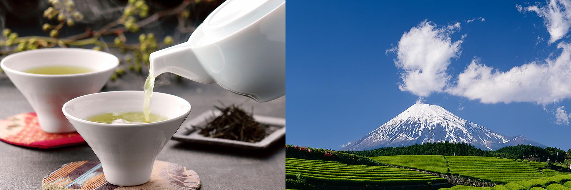 ヤマモリ製茶